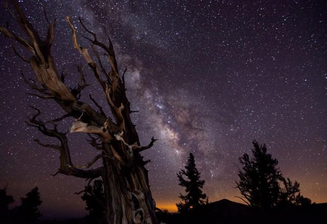 Tom Lowe bu fotoğrafla, 2010 Yılın Astronomi Fotoğrafçısı ödülünü kazandı.
